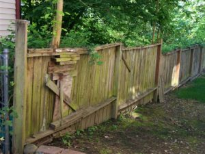 Fence Maint Not Allowed 2