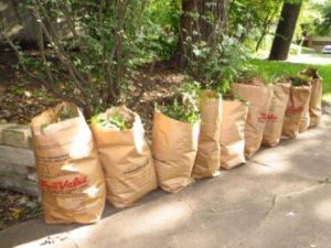 Yard Waste Allowed