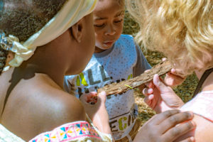 Preschoolers look at an inchworm on a branch.